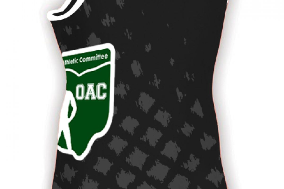 2014 State Singlet