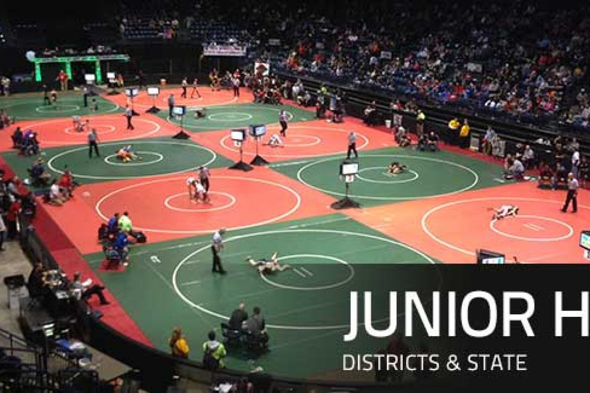 2015 90lbs Junior High State Finals Tagg vs Decatur